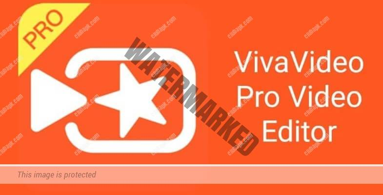 VivaVideo Pro 2021